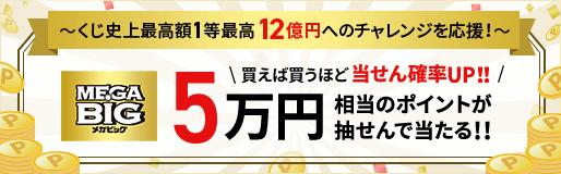 MEGA BIG メガビッグ 買えば買うほど当せん確率UP!5万円相当のポイントが抽せんで当たる!